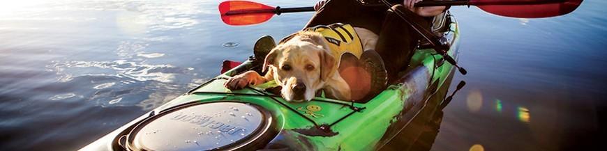 Kayaky